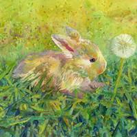 Gentle Wish Art Prints & Posters by Hailey E. Herrera Watermedia