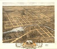 Map--Illinois--Naperville.1869
