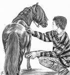 Miniature horse and Boy