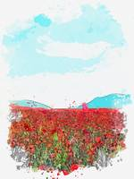 Popy Field, Alaverdi, Armenia, watercolor by Adam