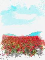 Popy Field, Alaverdi, Armenia -  watercolor by Ahm
