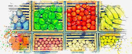 vegetables -  watercolor by Ahmet Asar