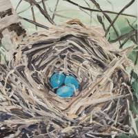 Bird Nest Art Prints & Posters by Jacqueline McDermott