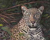 Original oil painting leopard with branches