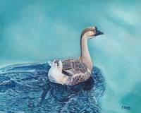 Original oil painting swimming goose