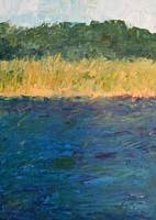 Lake Michigan Shoreline with Dunes and Grasses