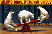 Adams Bros. International Circus Vintage Poster