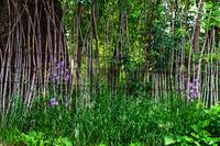 Stick Fence Green Grass and Purple Flowers