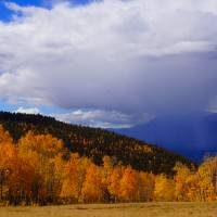 An Autumn Rainstorm in the Rockies_DSC03500 Art Prints & Posters by Jack Huber