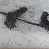 BIRDIES ON ZICHI by siniša (sine) berstovšek (sinonim)