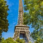 Eiffel Tower Revealed by Kim Wilson