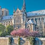 Notre Dame Cathedral by Kim Wilson