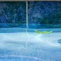 Aqua Agua and Leaf by Karen Adams