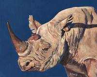 Original oil painting Rhino