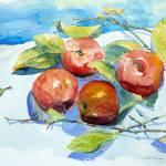 """Still Life with Fruits"" by ShaSha"