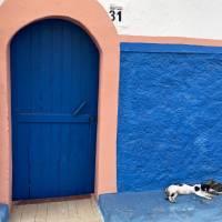 Rabat Doorway with cat Art Prints & Posters by Melinda Seyler