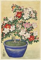 Blooming Azalea in Blue Pot by Ohara Koson