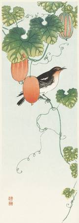 Songbird in Cucumber Plant by Ohara Koson