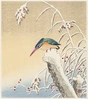 Kingfisher in the Snow by Ohara Koson