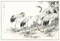 Japanese Crane and Bamboo by Numata Kashu