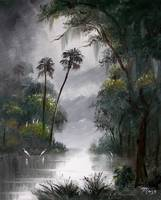 Misty Tropical Florida River