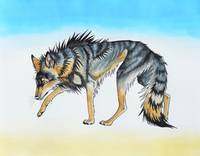 Blackthorn the Red Wolf