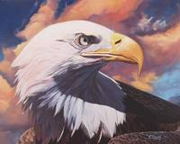 Original oil painting bald eagle