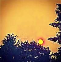 Forest Fire Sunset Pacific Northwest