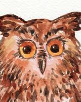 Baby Owl Curious Bird Watercolor Painting