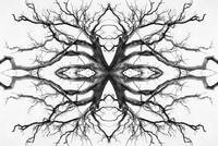 Eyes of the Ents Tree Symmetry Art