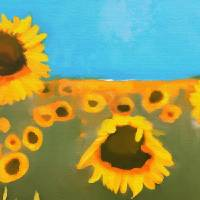 """sunflower fields forever"" by tammyleebradley"