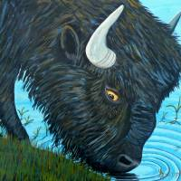 Shaggy Bison Art Prints & Posters by Anthony Dunphy