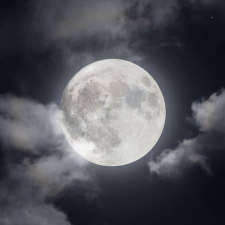 Luna in Fall