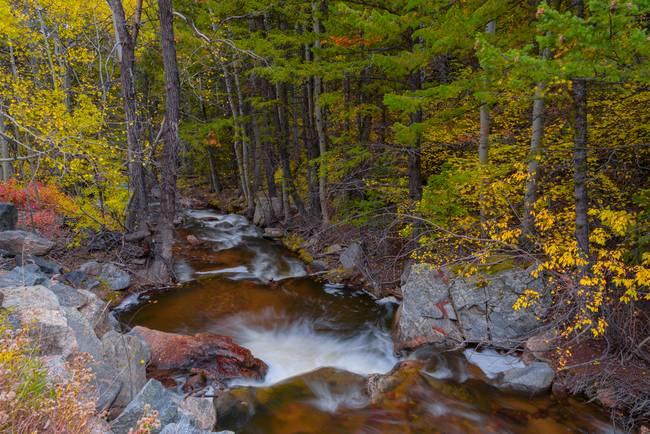 Rocky Mountain Autumn Fishing Hole