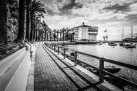 Catalina Island Avalon Casino in Black and White
