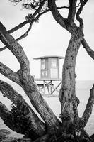 Newport Wedge Lifeguard Tower W in Black and White