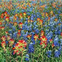 """Spring Bliss"" by HaileyWatermedia"