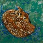 Sleeping Fawn Prints & Posters