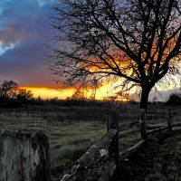 Forever Sunset P1145352 by Richard Thomas