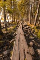 Acadia National Park in Maine by Cody York_Q7A4582