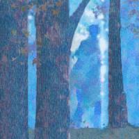 """""""WalkintheForest"""" by rogerbushman"""