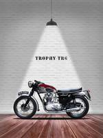 The Trophy TR6R Vintage Motorcycle