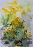 Abstract Helichrysum Watercolors Medicinal Plants