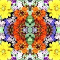 Flower Power Panel Art Prints & Posters by Amy Blount Achor