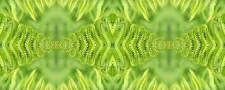 Diamond Fern Panel