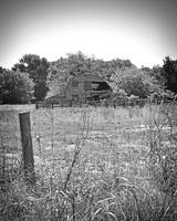 Texas Forgotten - Roadside Country Barn BW