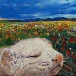 Ferret Dreams Prints & Posters