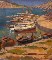 Antoni Samarra Tugues~Boats in a cove