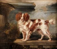 James Ward~Portrait of Dash, a Favourite Spaniel,