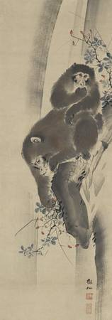 Mori Sosen~Monkeys and waterfall